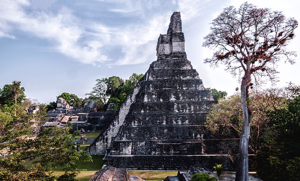 Mayan temple at the Great Plaza of Maya Archeological site of Tikal National Park in Guatemala.