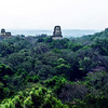 Mayan temples in the rainforest of Tikal National Park in Guatemala