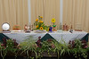 Floral Guernsey Awards table 160715 ©RLLord 7507 smg