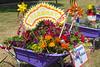 St Sampson Infant School wheelbarrow floral display