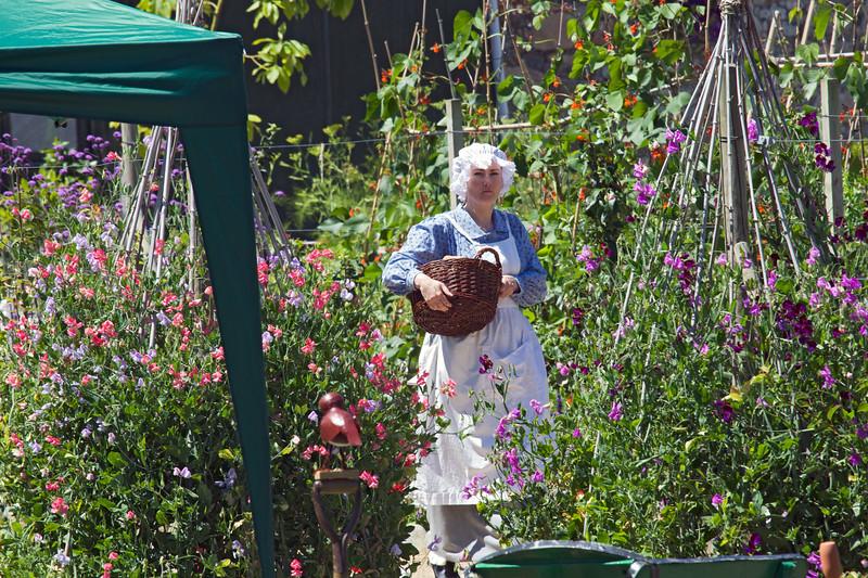 Elizabeth Went in the Victorian kitchen garden in Saumarez Park