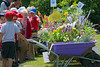 Vauvert primary school children view entries into the Floral Guernsey schools floral wheelbarrow competition