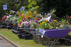 School wheelbarrow entries for Floral Guernsey competition