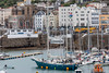 Fantastiko in shallow water in St Peter Port harbour, Guernsey