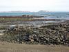 Save Belle Greve Bay march 261106 4620 smg