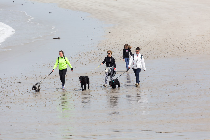 2016 Guernsey World Aid Walk walkers crossing Cobo Beach