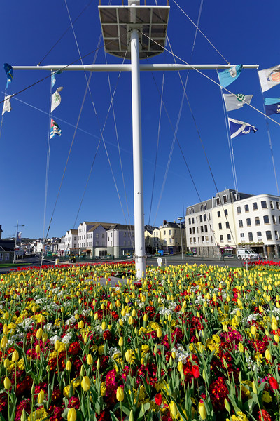 Weighbridge roundabout flower bed in St Peter Port, Guernsey