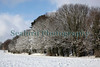 snow covered trees Fort George ©RLLord 020209 1150 smg