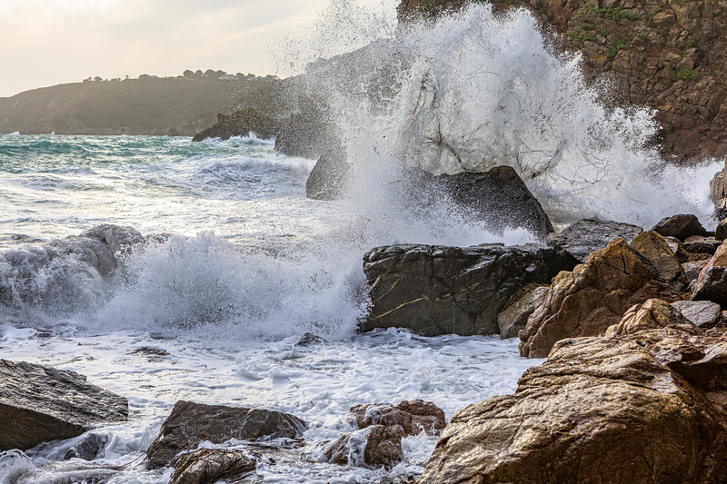Thongweed thrown by a wave crashing onto a large boulder at the foot of the western boulder field at Petit Port