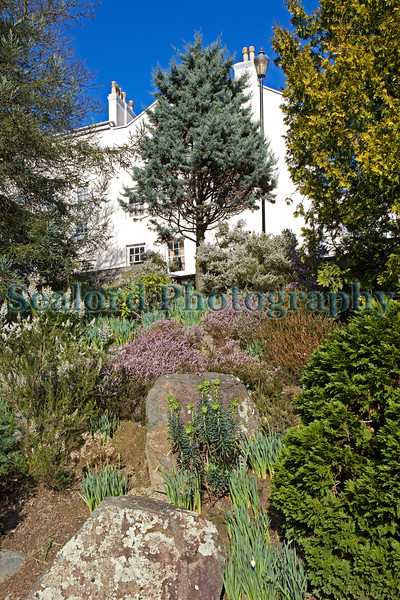 Sunken Garden St Peter Port 170213 ©RLLord 5102 smg