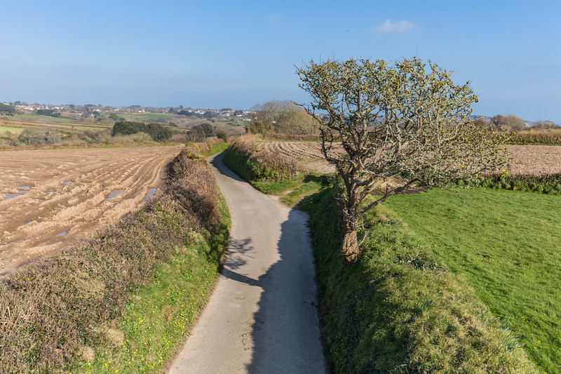 Forest parish lane, Guernsey