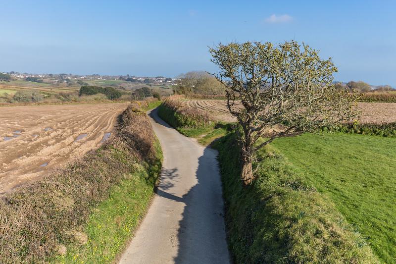 Forest parish lane, Guernsey