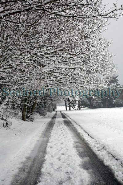 Fort George road snow ©RLLord 020209 1117 smg