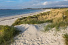 Sand dunes and dune grass at Vazon on Guernsey's west coast