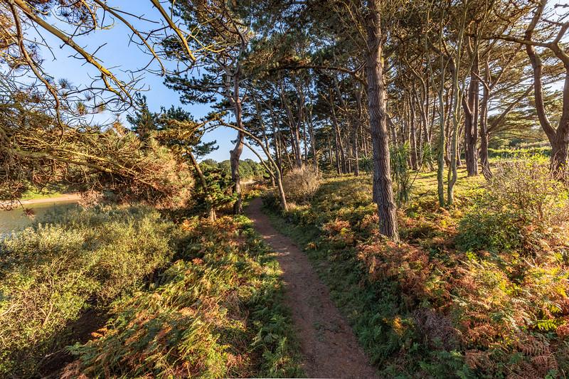 The Millennium Walk around St Saviour's Reservoir, Guernsey