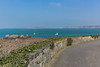 Guernsey south-west coast 130316 ©RLLord 7361 smg
