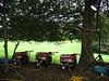 CP Honda generators 030908 9137 RLLord smg