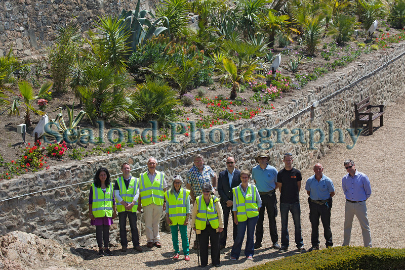 Castle Cornet west wall planting and volunteers 310514 ©RLLord 8957 smg