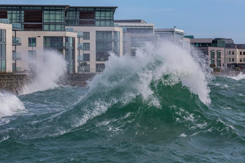 Admiral Park Belle Greve Bay large waves 100416 ©RLLord 9007 smg