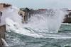 Belle Greve Bay fan wave 100416 ©RLLord 9413 smg