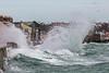 Belle Greve Bay fan wave 100416 ©RLLord 9412 smg