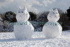 Guernsey snow cats Fort Road ©RLLord 020209 1176 smg