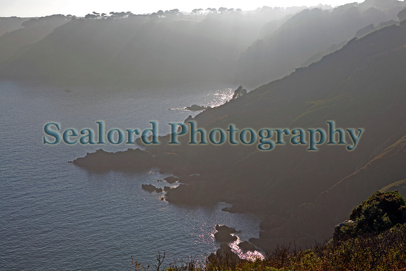Guernsey south coast cliffs in fog 230713 ©RLLord 8115 smg