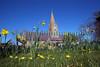 St Martin parish church daffodils 140309 RLLord 2393 smg