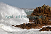 Le Hommet Nature Reserve large wave 080214 ©RLLord 7983 smg