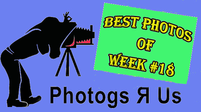 Photogs R Us Week #18