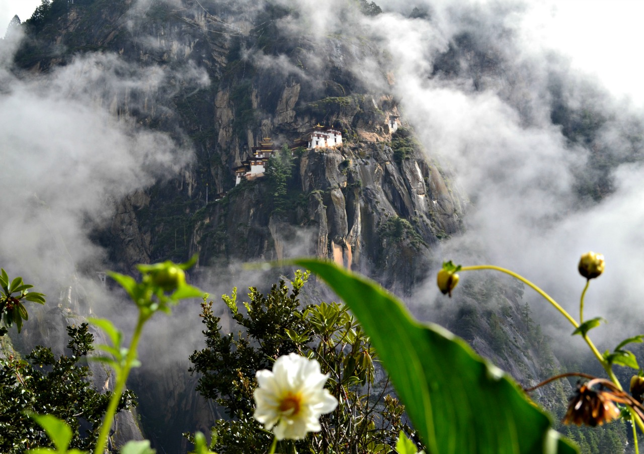tigers nest monastery travel to bhutan