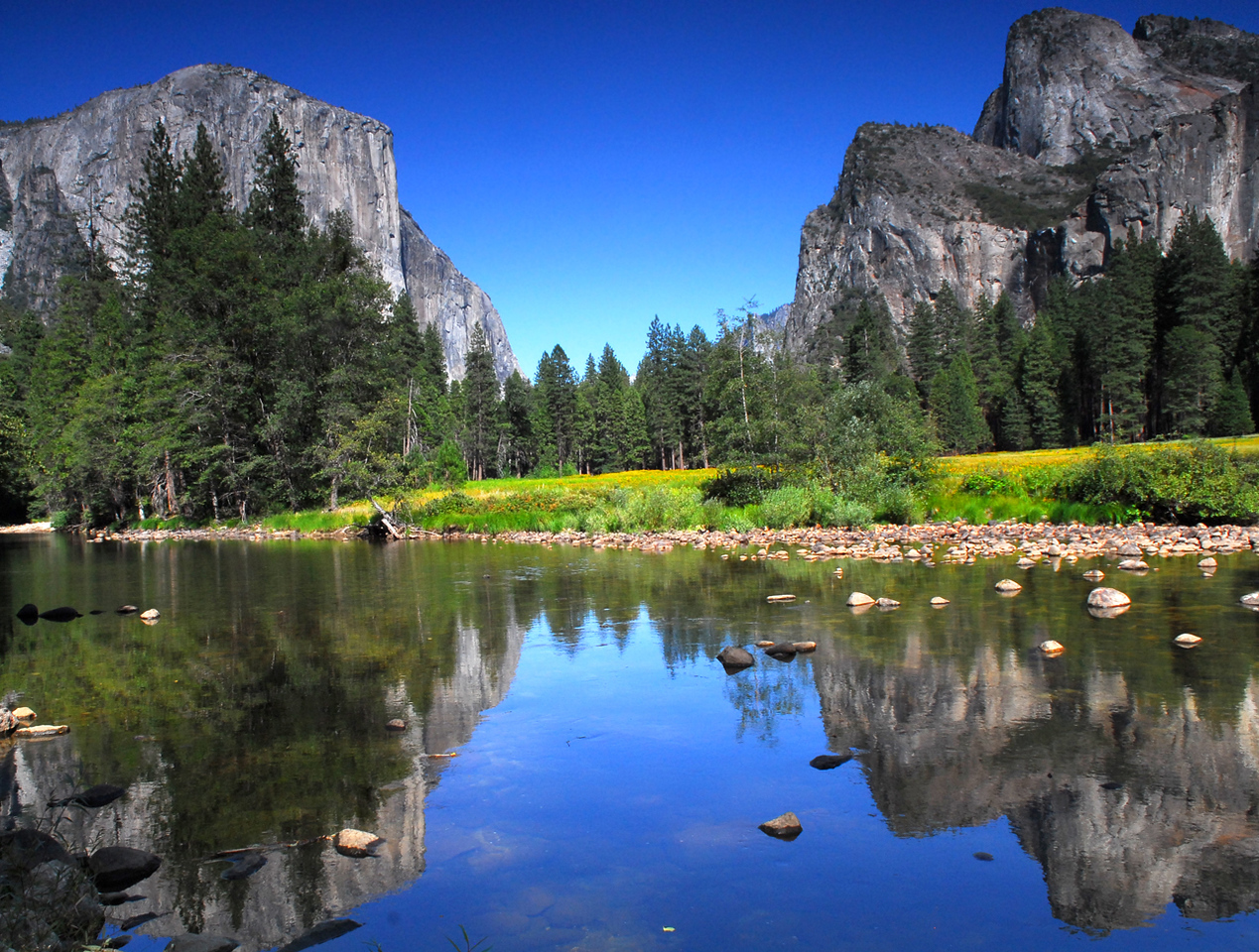 Summertime view of El Capitan in Yosemite National Park from the Merced River