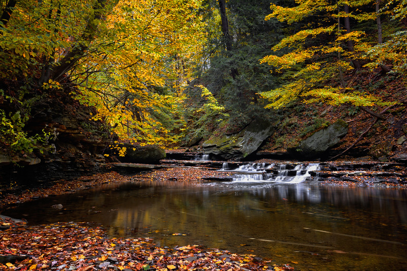 A small waterfall on Brandywine Creek in Cuyahoga Valley National Park Ohio.  Seen here in autumn with colorful fallen leaves.