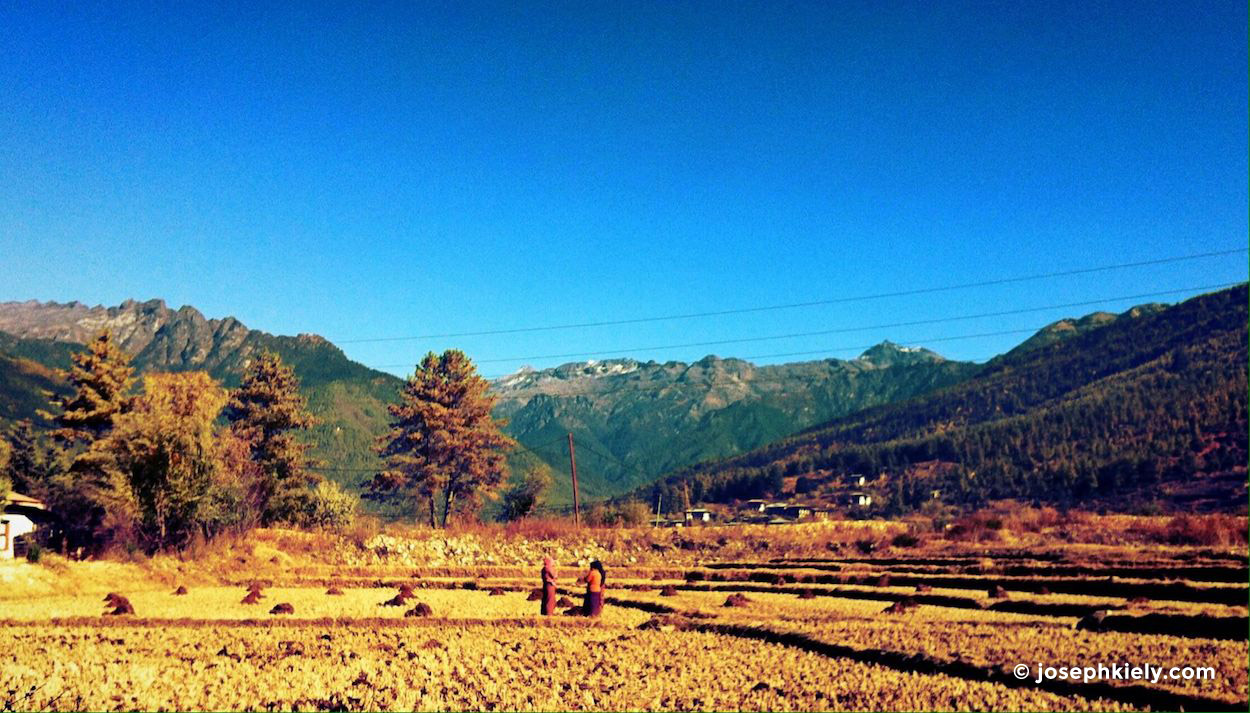 paro farm land in Bhutan