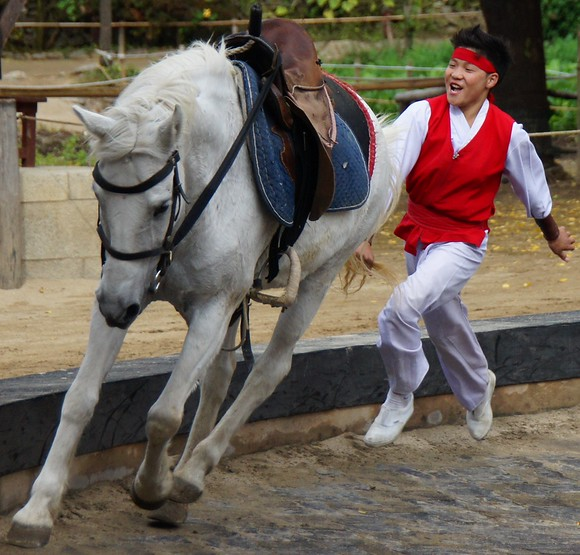 A boy blissfully chases after the horse he was riding moments before while flashing an authentic smile.  The equestrian performance at the Korean Folk Village was the most popular and entertaining show of the day.