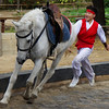 A boy gleefully chases after his horse that has darted ahead of him - Korean Folk Village, Yongin, South Korea.