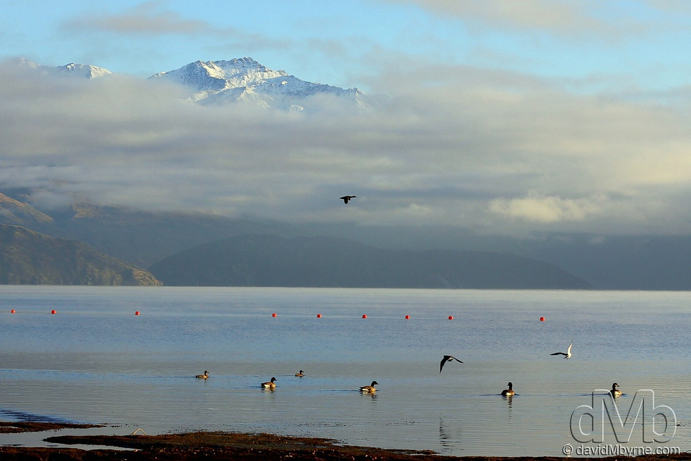 Early morning at Lake Wanaka.
