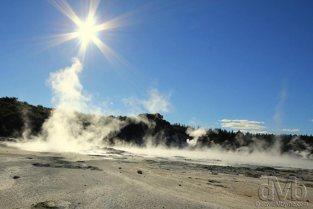 Geothermal Activity at Steam Hells Gate Geothermal Reserve, Rotorua.