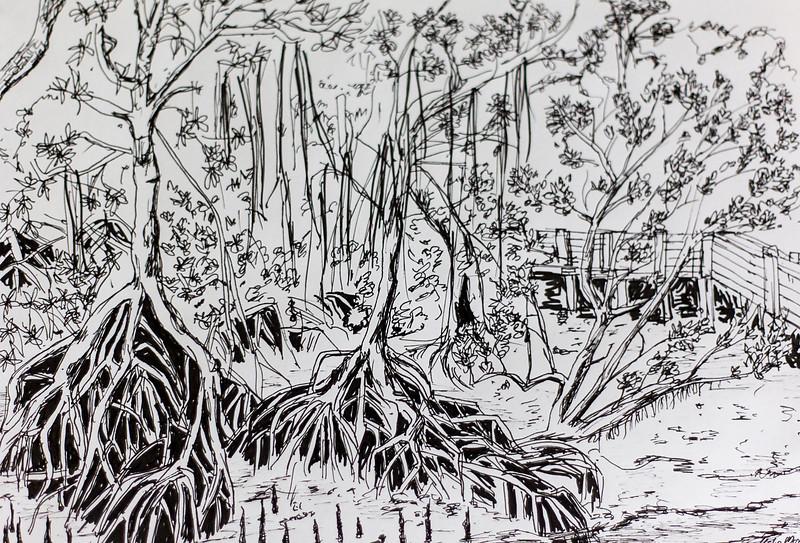 Mangrove swamps at Sungei Buloh, Singapore