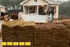 130323 Cox Habitat0002