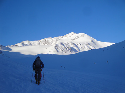 Early morning skinning towards Cevedale, our first ski mountaineering objective.