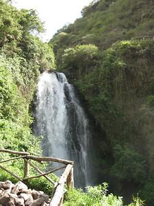 Ecuador is full of lush greenery and beautiful waterfalls.