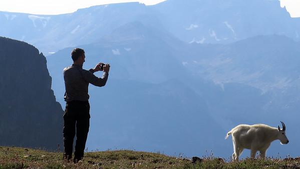 Jim Capturing plateau wildlife