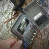 The Bear ate this trail camera