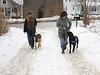 HOLLY PELCZYNSKI - BENNINGTON BANNER Sue Atland and Tara Schatz  walk their dogs Harry Gatsby.