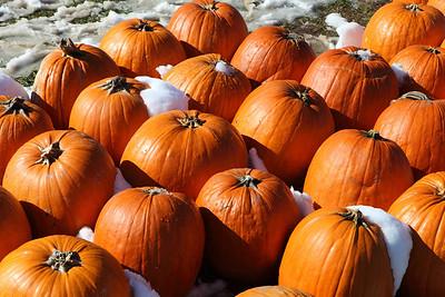 Bishops Halloween-jlb-10-30-11-8662