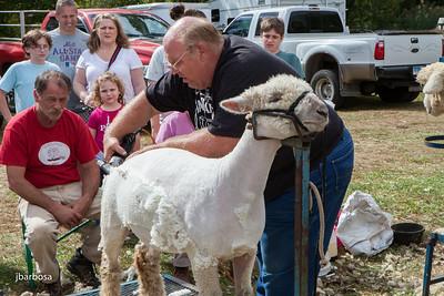 Guilford Fair-jlb-09-21-13-9883w