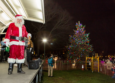 Gfd Tree Lighting010-jlb