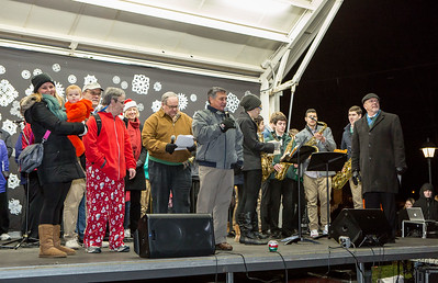 Gfd Tree Lighting007-jlb
