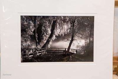 SAA Images Auction-jlb-04-07-15-2392w
